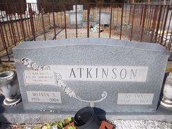 Jo Anne Atkinson