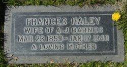 Frances Haley Fannie <i>Yancey</i> Barnes