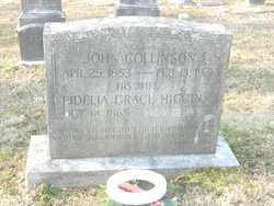 Fidelia Grace <i>Higgins</i> Collinson