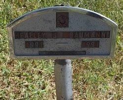 Healley J Baumann