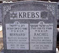 Rachel Krebs
