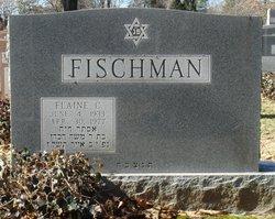 Elaine <i>Cohen</i> Fischman
