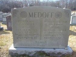 David Medoff