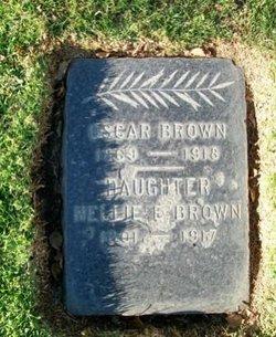 Nellie E Brown