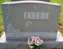 Viola F <i>Thraum</i> Evers