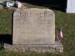 Pleasant Burton Brewer