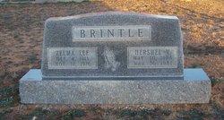 Zelma Lee <i>Palmer</i> Brintle