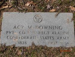 Asa Marshall Downing