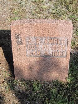A. S. Angle