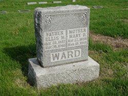 Mary Dezina <i>Lindsey</i> Ward