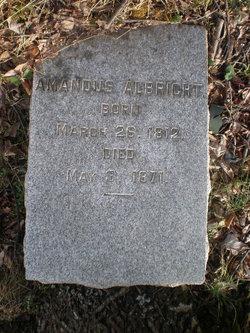 Amandus Albright