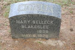 Mary <i>Selleck</i> Blakeslee