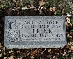 Andrea Joyce Brink