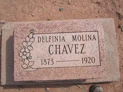 Delfinia Molina Chavez