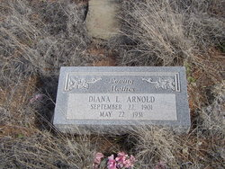 Diana L Arnold