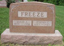 Louis A. Freeze