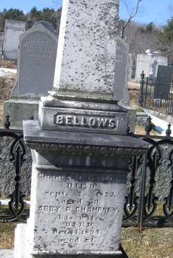Abby Parker <i>Champney</i> Bellows