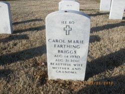 Carol Marie <i>Farthing</i> Briggs