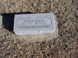 William Martin Mapes