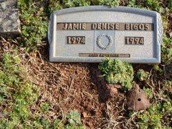 Jamie Denise Bigos