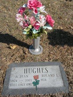 A Jean <i>Stines</i> Hughes