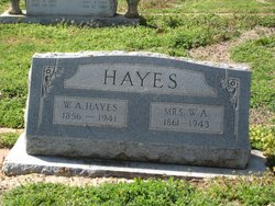 Wallace A Hayes