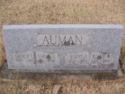 Harry Ellory Auman