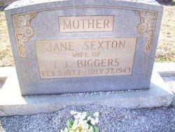 Jane Sexton Jennie <i>Jones</i> Biggers