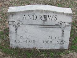 William C Andrews