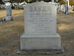 Alexander H Baker
