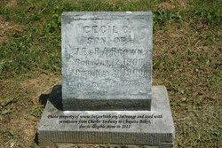 Cecil P. Brown