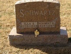 Norbert H Schwartz