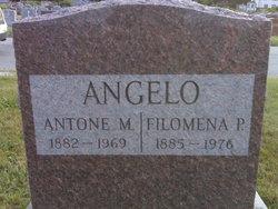 Filomena P Angelo