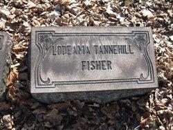 Lodeama <i>Tannehill</i> Fisher