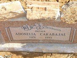 Adonelia <i>Herrera</i> Carabajal