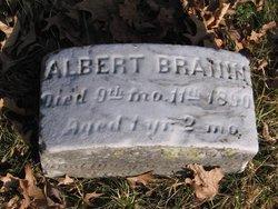 Albert Branin