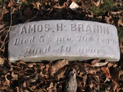 Amos H Branin
