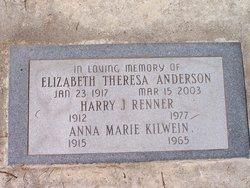 Elizabeth Theresa <i>Kilwein</i> Anderson