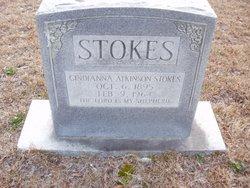 Cindianna Atkinson Stokes