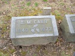 Alexander Mitchell Carr