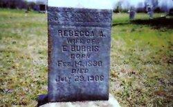 Rebecca Ann <i>Pauley</i> Burris