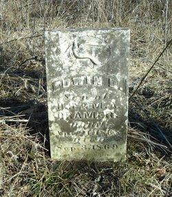 Edwin D. Cramer