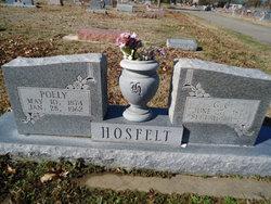 George Casper Hosfelt