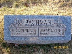 Sophie Lydia <i>Beck</i> Bachman