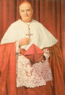 Cardinal Albert Gregory Meyer