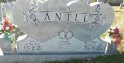 Hollies Mae <i>Blankenship</i> Antle