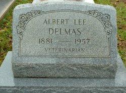 Dr Albert Lee Delmas