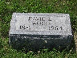 David Lee Wood
