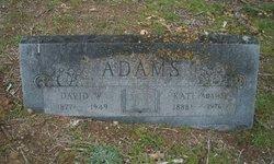 David Wesley Adams