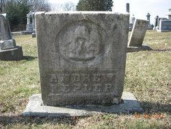 Andrew Kepler